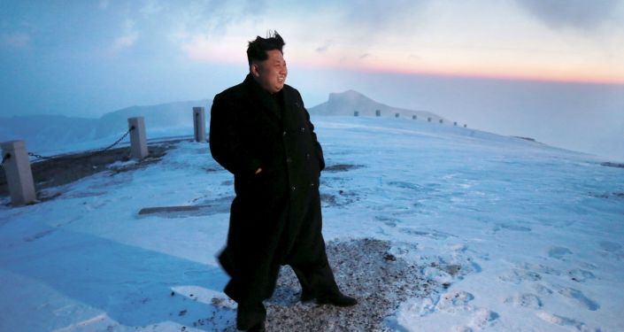 North Korean leader Kim Jong-un views the dawn from the summit of Mt Paektu April 18, 2015, in this photo released by North Korea's Korean Central News Agency (KCNA) on April 19, 2015.