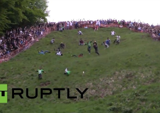UK: Crackers cheese-chasers plunge down hill in cheese-rolling race