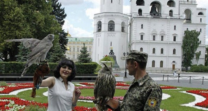 Filya the eagle-owl and one of the Kremlin's falcons.