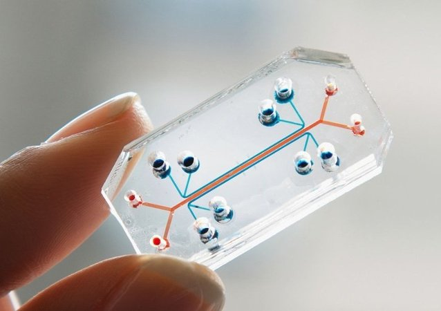 Wyss Institute's Organs-On-Chips