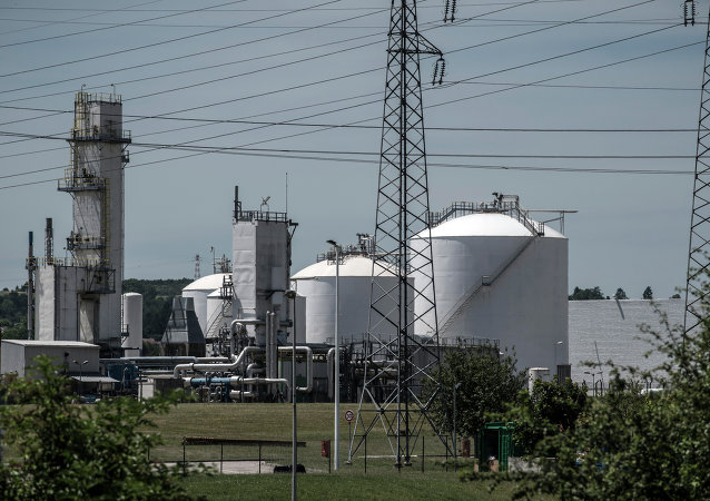 A photo taken on June 26, 2015 shows the Air Products gas factory in Saint-Quentin-Fallavier, near Lyon, central eastern France, after a suspected Islamist assault in which a decapitated head was pinned to the gates