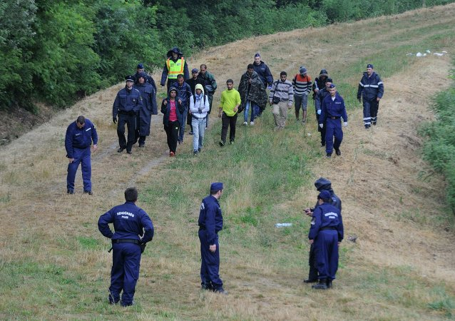 Police officers escort illegal migrants, captured in the holm of the Tisza river near Szeged, 170 kms southeast of Budapest, Hungary, Wednesday, June 24, 2015