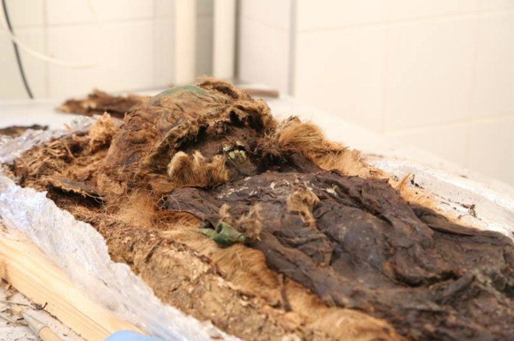 Scientists uncovered the mummified remains of a young boy, wrapped in layers of fur and tree bark, and buried along with a small bronze axe, a figurine of a bear and several silver temple rings.