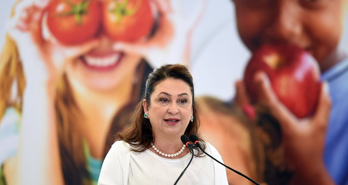 Brazil's Agriculture Minister, Katia Abreu, delivers a speech during the launching ceremony of the Agricultural Protection National Plan, at Planalto Palace in Brasilia