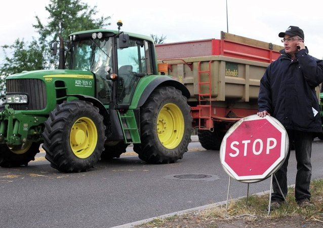 French farmers control trucks at the French-German border on the Rhine bridge in Strasbourg, eastern France, in order to stop importation of foreign meat and milk products in France, Monday, July 27, 2015.
