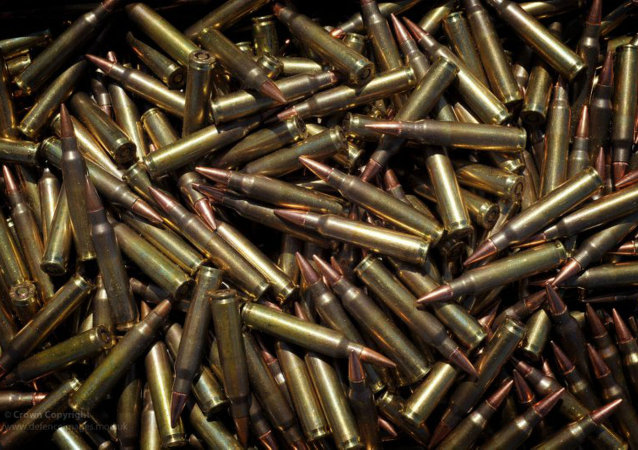 Aurora Victim's Family to Pay $200K After Trying to Sue Ammo Dealers