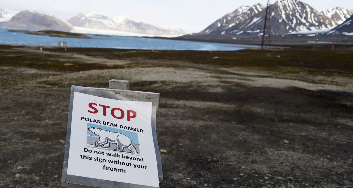 A warning sign reading 'stop, polar bear danger, do not walk beyond this sign without your firearm', at the entrance of the scientific base of Ny Alesund in the Svalbard archipelago