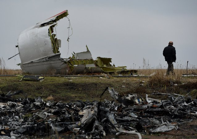 Dutch experts on Malaysian Boeing crash site