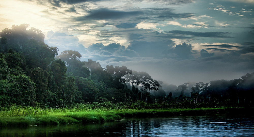 Lake Sunrise on the Tambopata River in the Peruvian Amazon.