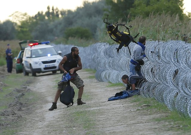 Hungarian police positioned nearby watch as Syrian migrants climb under a fence to enter Hungary at the Hungarian-Serbian border near Roszke, Hungary August 26, 2015