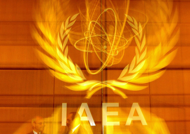 International Atomic Energy Agency's (IAEA) delegates speak in the board room prior to the IAEA meeting at the IAEA headquarters in Vienn