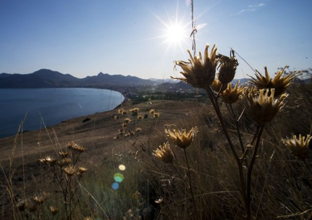 Representatives of several countries have expressed their willingness to visit Crimea.