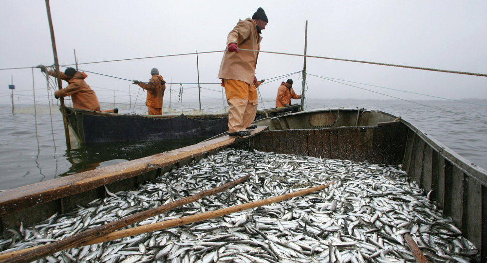 Us russia to sign bilateral agreement to combat illegal fishing us russia to sign bilateral agreement to combat illegal fishing platinumwayz