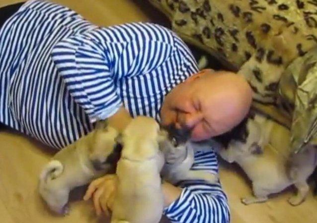 Good morning, pugs!