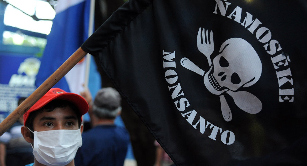 People demonstrate against the US biotechnology giant Monsanto and its genetically modified crops and pesticides, in Asuncion, on May 25, 2015 two days after thousands of people hit the streets in cities across the world to protest against the company.
