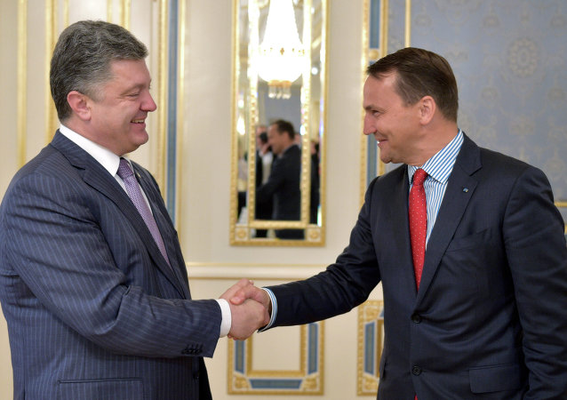 Ukrainian President Petro Poroshenko, left, shakes hands with Poland's Foreign Minister Radoslaw Sikorski, during a meeting in Kiev, Ukraine, Tuesday, July 15, 2014