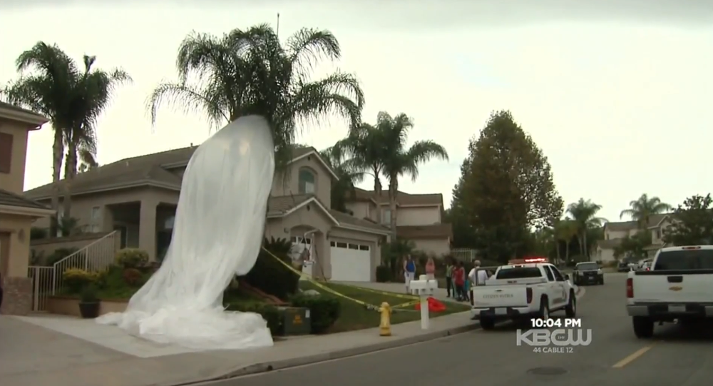 Giant Google Balloon Falls From Sky Onto Quiet SoCal Street