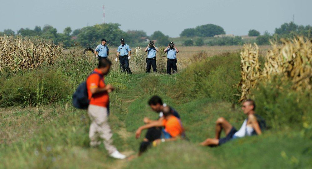 Croatian policemen observe a group of migrants on the border with Serbia near Tovarnik, Croatia September 16, 2015