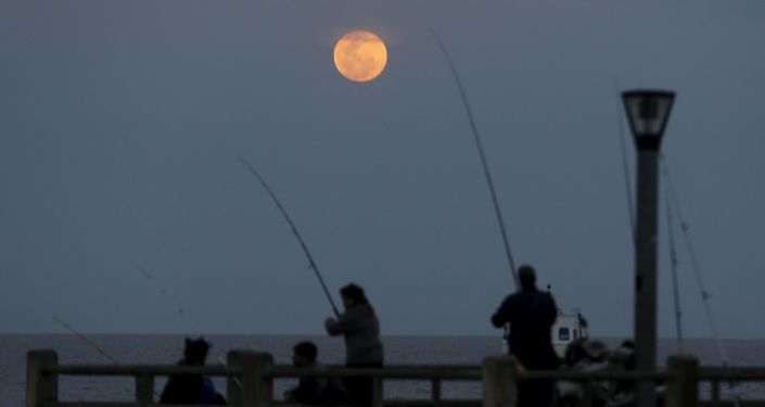 A supermoon rises in the sky over the Rio de La Plata in Buenos Aires, Argentina, September 27, 2015