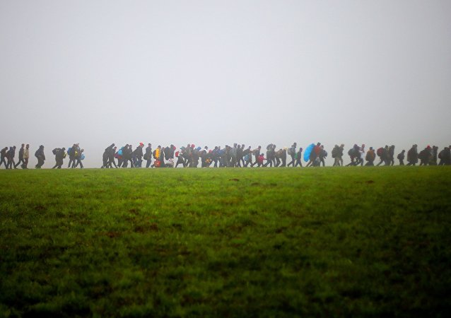 A group of migrants make their way over a meadow after crossing the border between Austria and Germany in Wegscheid near Passau, Germany, Thursday, Oct. 15, 2015.