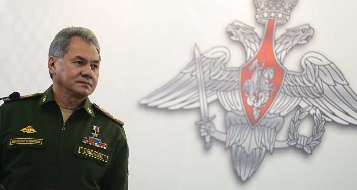 Russian Minister of Defence Sergei Shoigu