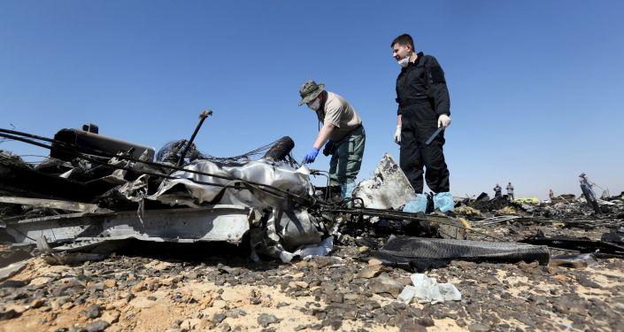 Следователи на месте крушения самолета на Синайском полуострове