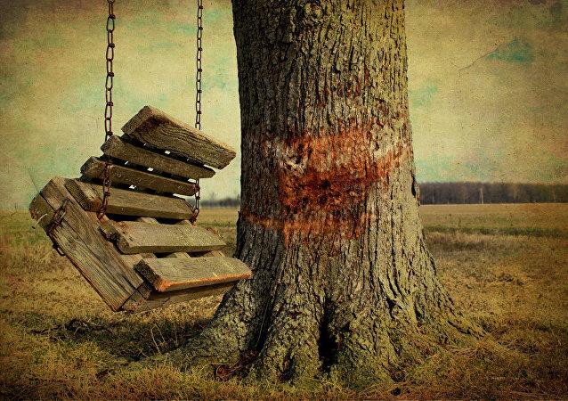 Empty swings on a farm