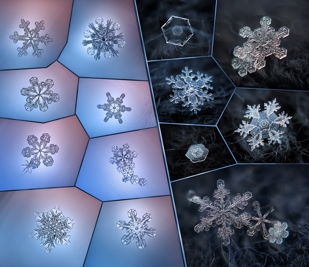 Fragile, Unique, Beautiful: The Mystery of Snowflakes