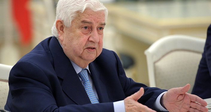 Russian President Vladimir Putin meets with Syrian Foreign Minister Walid Muallem