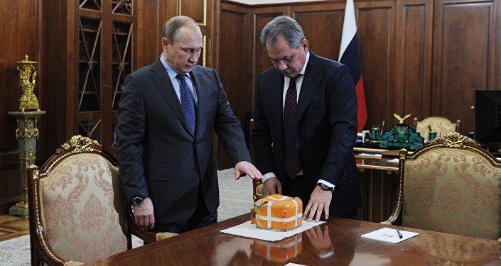 President Vladimir Putin meets with Defense Minister Sergei Shoigu