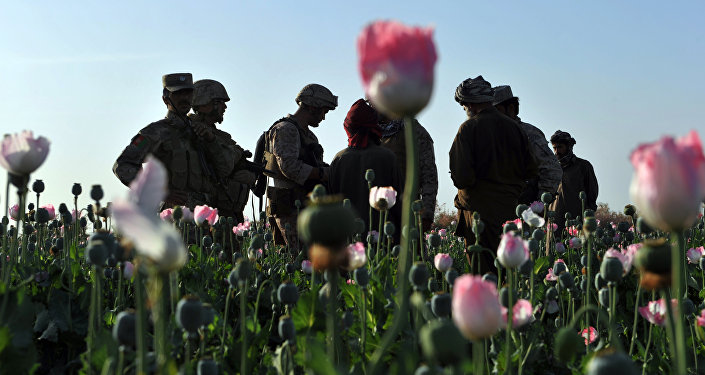 Afghanistan and the CIA Heroin Ratline - Sputnik International