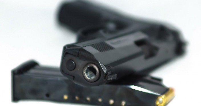 A US pro-gun activist has been shot by her 4-year-old son in Florida, local media reported.