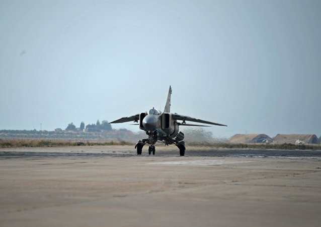A MiG-23 aircraft of the Syrian Air Force on a runaway at the Hama airbase near the city of Hama, Syria's Hama Province