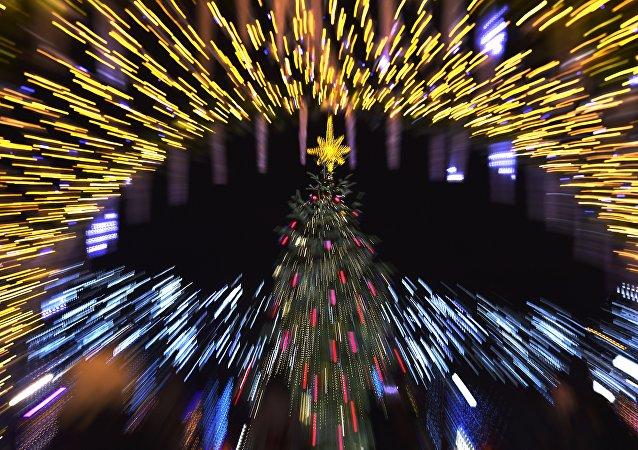 An illuminated Christmas tree