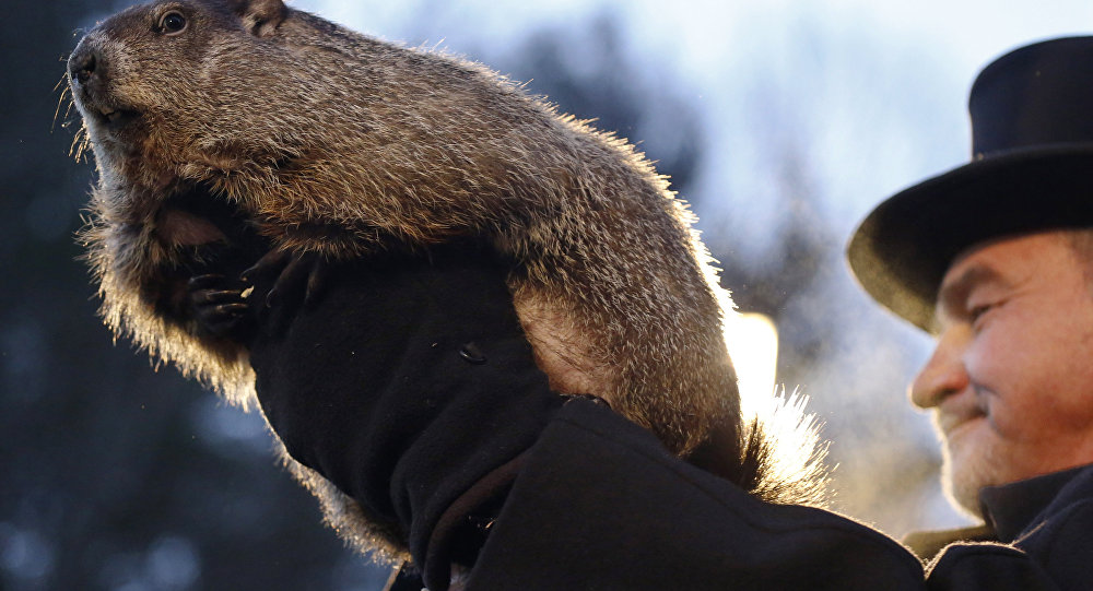 Will groundhog give good news for winter sufferers?