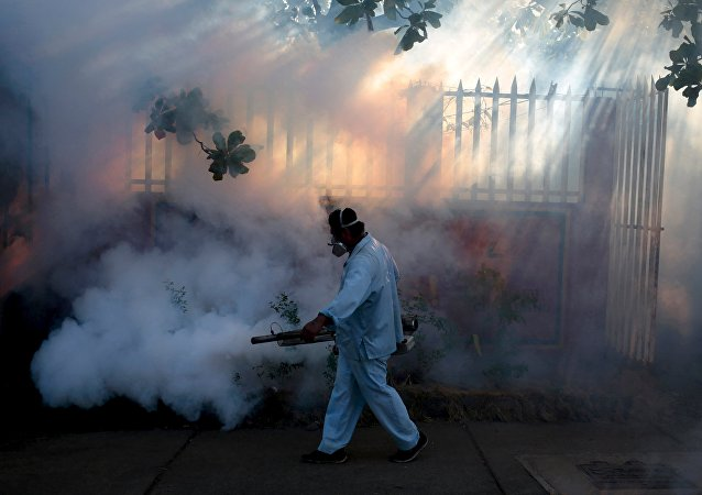 A health ministry worker fumigates a house to kill mosquitoes during a campaign against dengue and chikungunya and to prevent the entry of Zika virus in Managua, Nicaragua