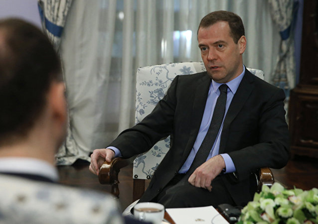Prime Minister Medvedev gives interview to German daily Handelsblatt