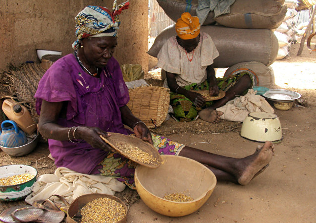 Women sift grains of maize among sacks of grain in a grains market in the northern Nigerian town of Maiadua on the border with Niger