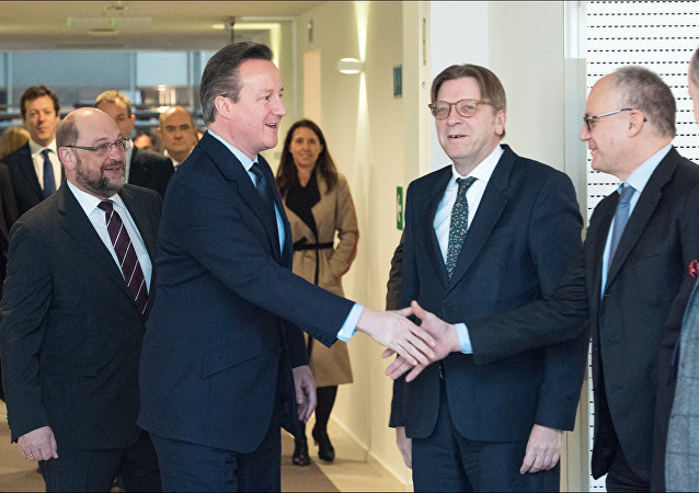 UK PM David Cameron at the European Parliament