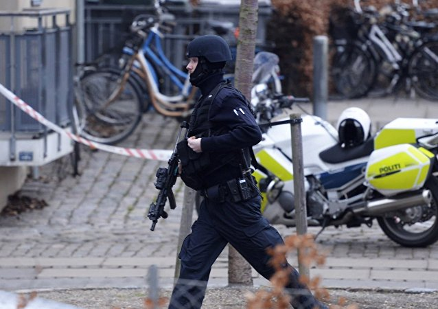 An armed security officer.Copenhagen (File)