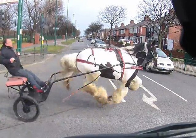 Near miss for this horse and cart crossing junction