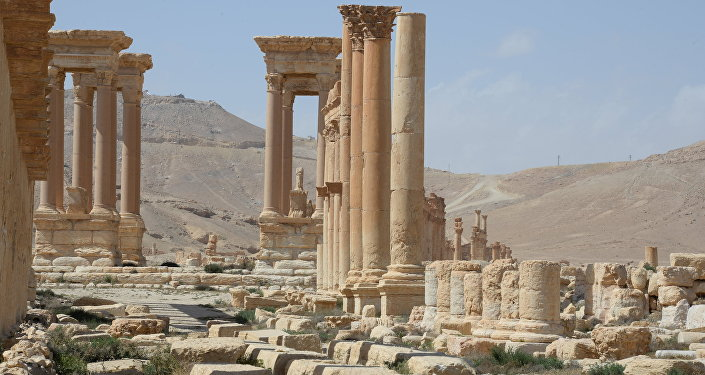 Historic site in Palmyra destroyed in military operations