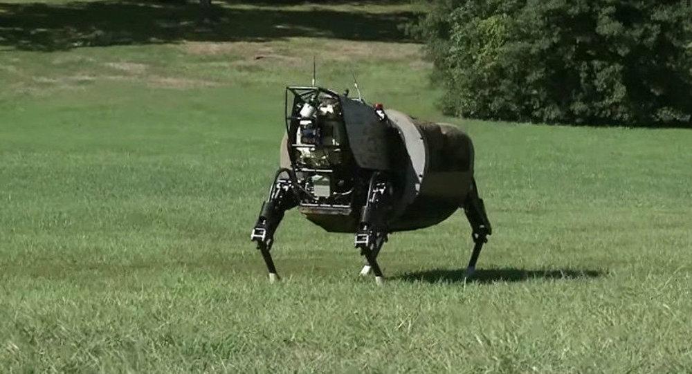A US biomorphic robot