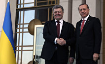 Turkey's President Recep Tayyip Erdogan and Ukraine's President Petro Poroshenko shake hands during a welcoming ceremony in Ankara.