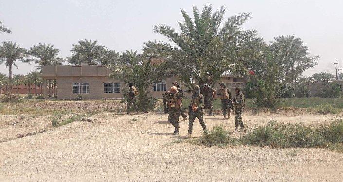 Fallujah (Iraq)
