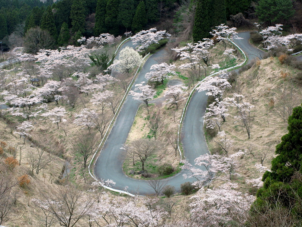 Hypnotizing Travel Magnets: When Roads Are Destinations