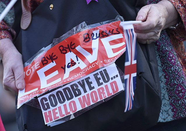 A vote leave supporter holds a poster in Westminster, London, Britain June 24, 2016