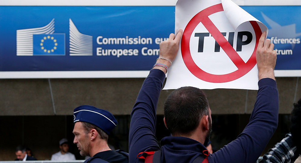 French Minister Blames US Protectionism for TTIP Failure