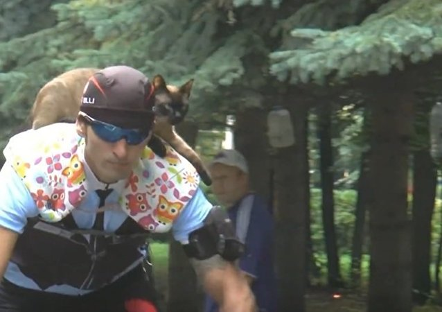 Meet Semyon, Cat With Cycle Club Membership