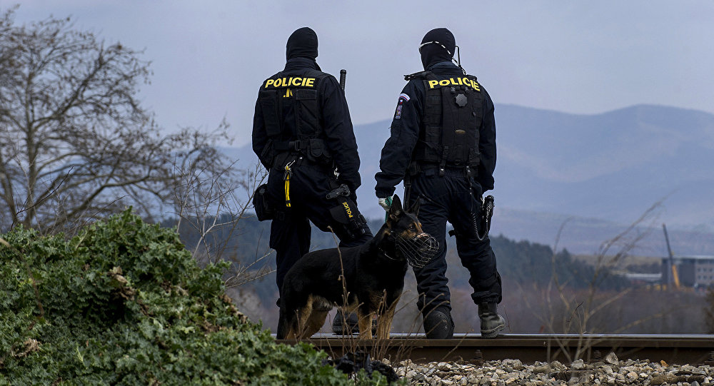Czech police officers with a dog observe the border (File)